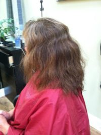 Brazilian Blowout Smoothing Treatment Before